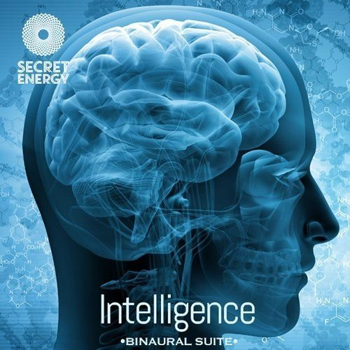 Intelligence_Frequency_Suite